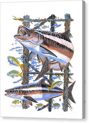 Cobia Hangout Canvas Print by Carey Chen