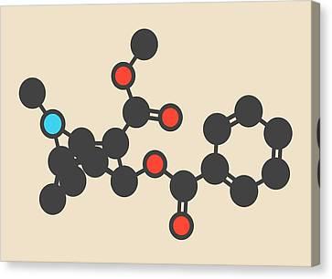 Cocaine Stimulant Drug Molecule Canvas Print by Molekuul