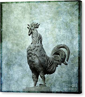 Cock Canvas Print by Bernard Jaubert