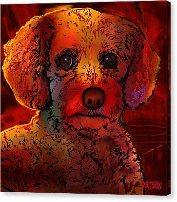 Cockapoo Dog Canvas Print