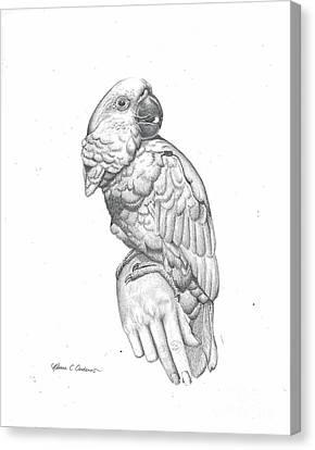 Cockatoo Loves Canvas Print