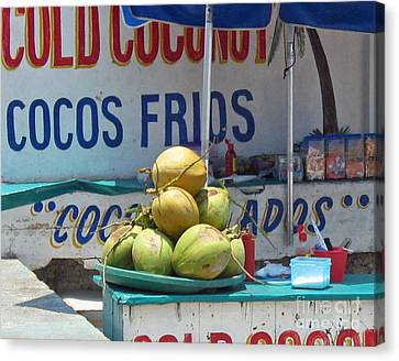Canvas Print featuring the photograph Coconuts - Mazatlan by Cheryl Del Toro