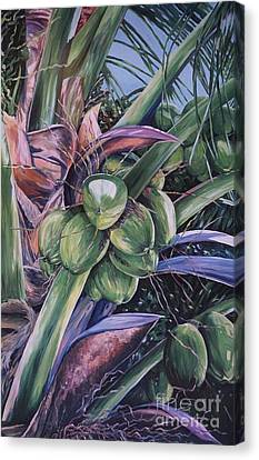 Coconuts   14x26 Canvas Print