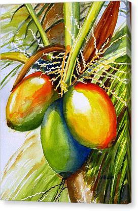 Coconuts Canvas Print by Carlin Blahnik