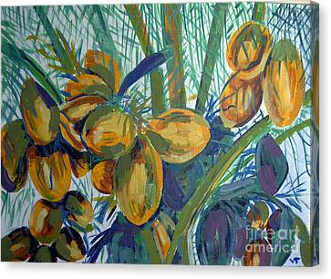 Canvas Print featuring the painting Coconuts by Vicky Tarcau