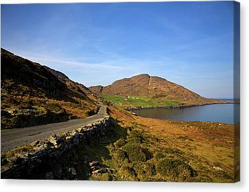 Cods Head, Beara Peninsula, County Canvas Print by Panoramic Images
