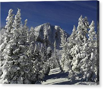 Cody Peak After A Snow Canvas Print by Raymond Salani III