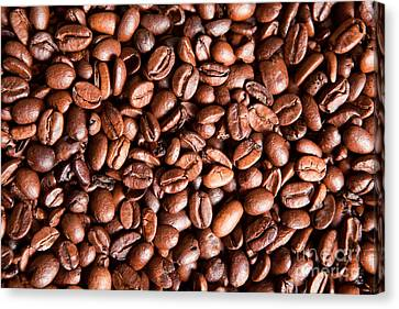 Coffee Beans  Canvas Print by Sharon Dominick