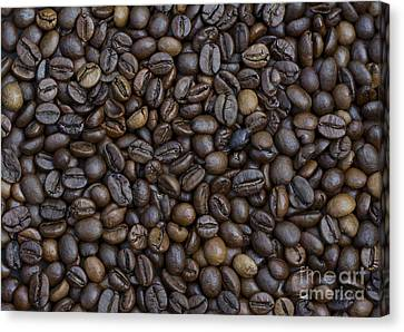 Coffee  Canvas Print by Bobby Mandal