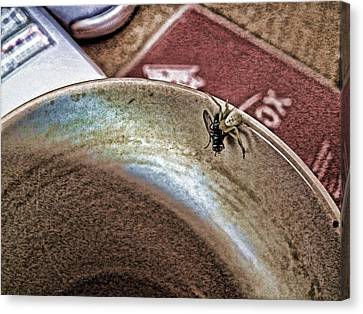 Canvas Print featuring the digital art Coffee Cup Spider Fly Oh My by Robert Rhoads