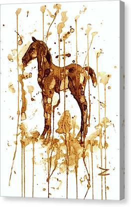 Coffee Foal Canvas Print by Zaira Dzhaubaeva