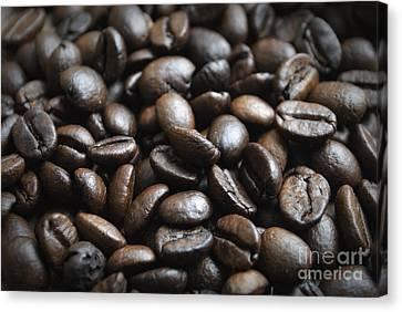 Coffee Canvas Print by Jelena Jovanovic