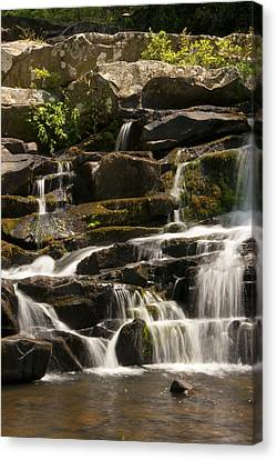 Coker Creek Cascades Canvas Print