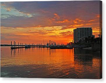 Colbalt Morning Canvas Print by Michael Thomas
