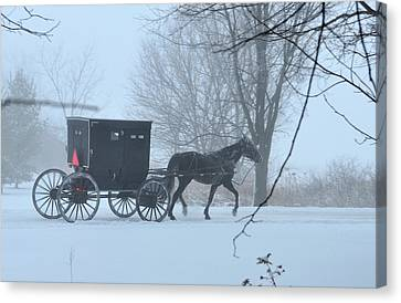 Cold Amish Morning Canvas Print