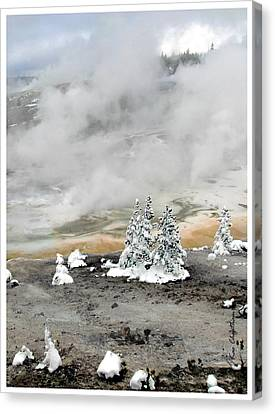 Cold And Hot Trees Canvas Print