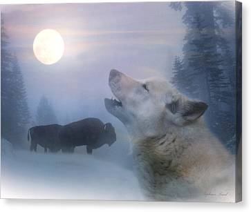 Cold Moon Canvas Print by Stephanie Laird