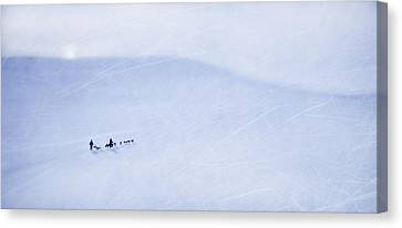 Cold Nights Under The Midnight Sun Canvas Print by Theresa Tahara
