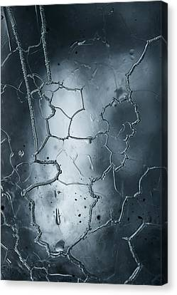 Cold Steel Canvas Print by Ted Raynor