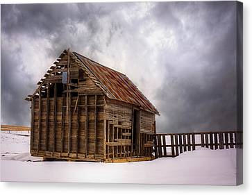 Cold Canvas Print by Thomas Zimmerman