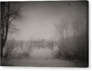Cold Time Canvas Print by Svetlana Sewell
