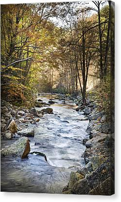 Cold Water Canvas Print by Debra and Dave Vanderlaan