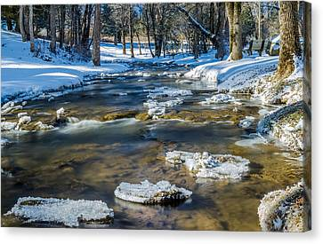 Cold Winter Creek Canvas Print