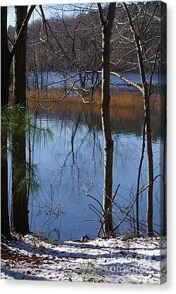Canvas Print - Cold Winter Day by Tannis  Baldwin