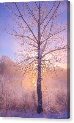 Cold Winter Morning Canvas Print