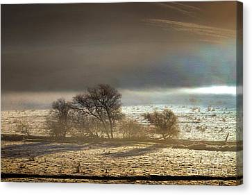 Cold Wintery Morning Over The Valley In Sonoma County Canvas Print