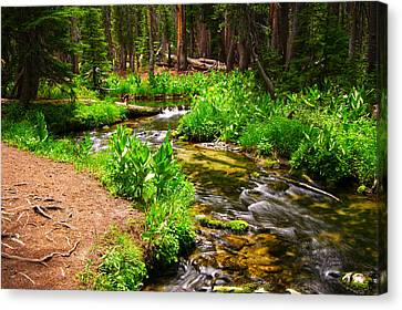 Coldwater Creek By Frank Lee Hawkins Canvas Print