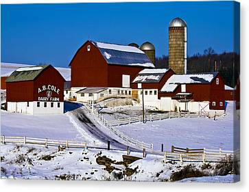 Cole Dairy Farm Canvas Print by David Simons