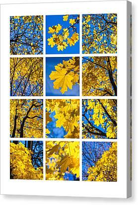 Collage October Blues Canvas Print by Alexander Senin
