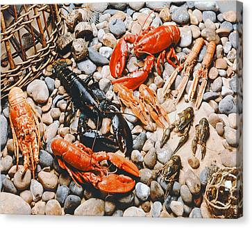 Collection Of Shellfish Canvas Print