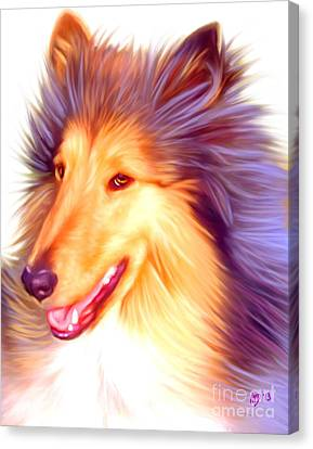 Collie Pics Canvas Print - Collie Art Work by Iain McDonald