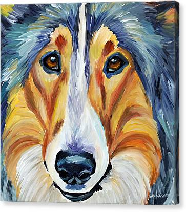 Collie Canvas Print by Melissa Smith