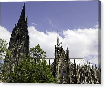 Cologne Cathedral 34 Canvas Print by Teresa Mucha