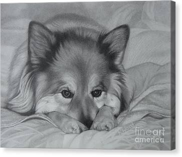 Huskies Canvas Print - Colonel Tasmanian Devil by Karen Wood