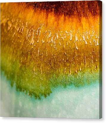 Blending Canvas Print - Color Fade by Christi Kraft