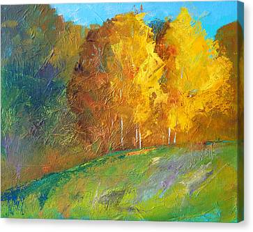 Color Canvas Print by Nancy Merkle