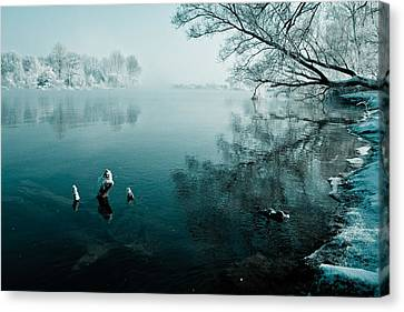Color Of Ice Canvas Print by Davorin Mance