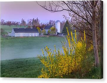 Color Of Spring Canvas Print by Bill Wakeley
