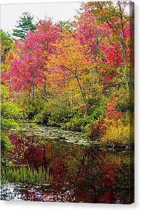 Canvas Print featuring the photograph Color On The Water by Mike Ste Marie
