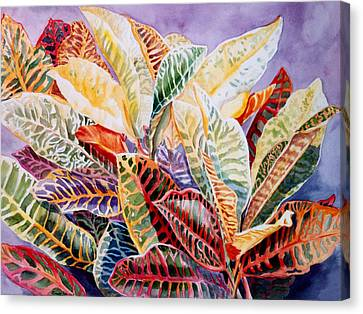 Canvas Print featuring the painting Color Patterns - Crotons by Roxanne Tobaison