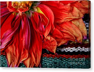 Color Power Canvas Print by Jeanette French