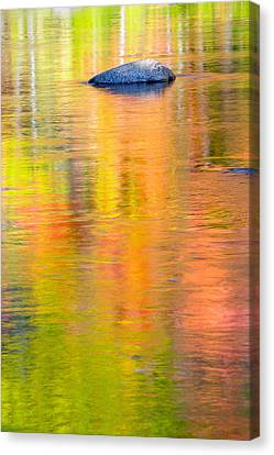 Color Reflections-1 Canvas Print