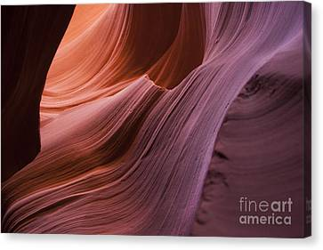 Color Wave Canvas Print