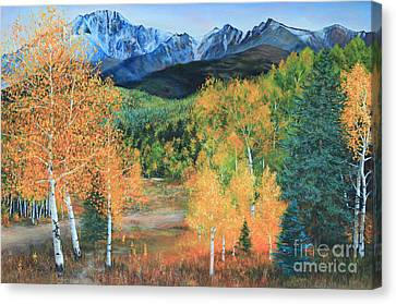 Colorado Aspens Canvas Print by Jeanette French