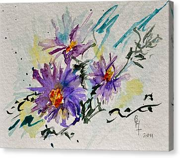 Colorado Asters Canvas Print by Beverley Harper Tinsley