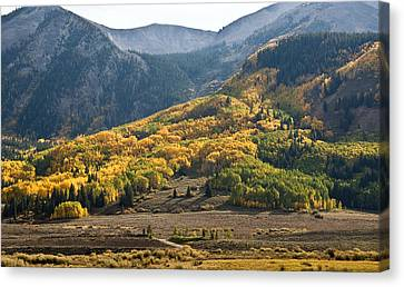 Canvas Print featuring the photograph Colorado Changing Eleven   by Eric Rundle